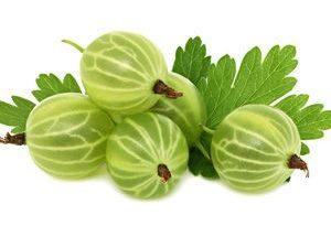 Grosella Espinosa gooseberry fruit Frutas del bosque