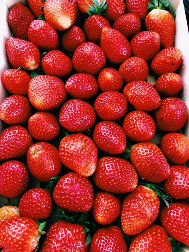 fresones temporada fruta del bosque