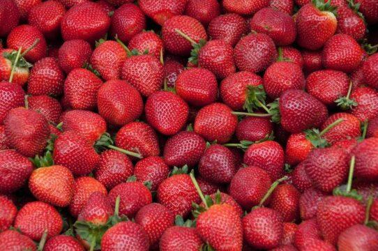 fresas strawberries frutos rojos