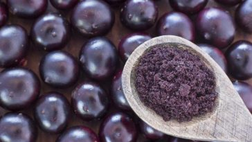 acai berry beneficios