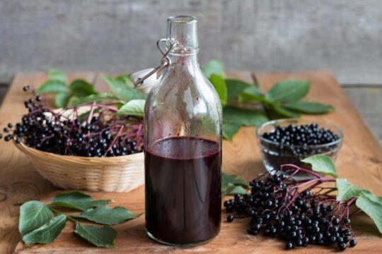 beneficios de las bayas de sauco elderberries