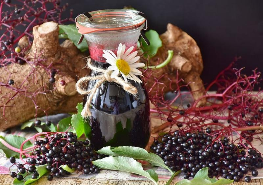 recetas jugo zumo bayas de sauco
