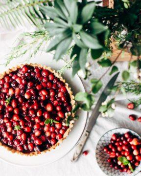 recetas de arandanos rojos pastel de cranberry