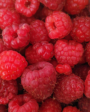 valor nutricional de las frambuesas