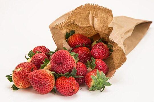 fresas frescas y congeladas