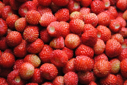 fresas comprar beneficios dieta