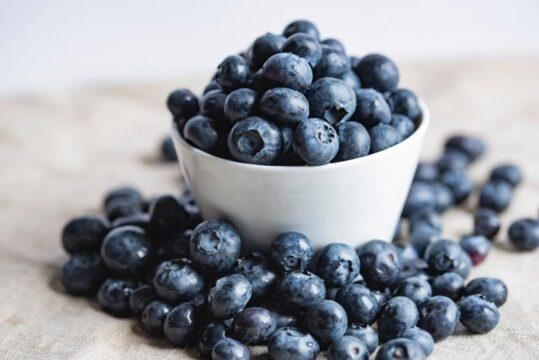desayuno comer arandano azul