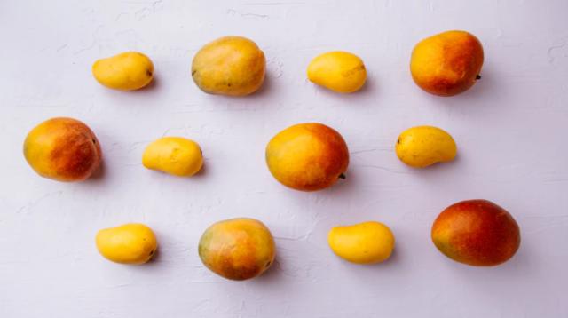 tipos de mango